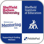 Week 4 Badge Supporting and Guiding Mentees