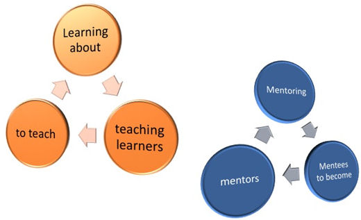 learning stages model3
